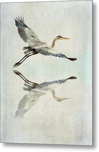 Reflective Flight Metal Print