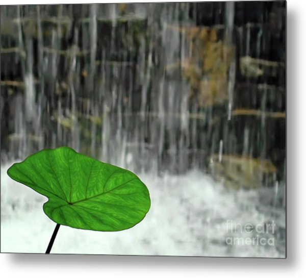 Refreshed By The Waterfall Metal Print