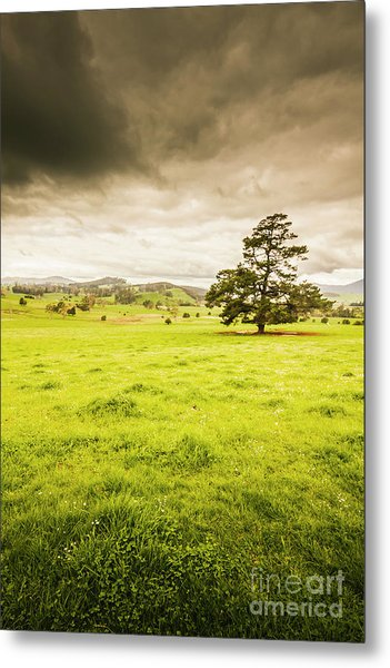Regional Rural Land Metal Print