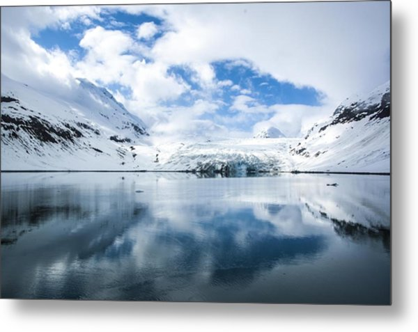 Reid Glacier Glacier Bay National Park Metal Print