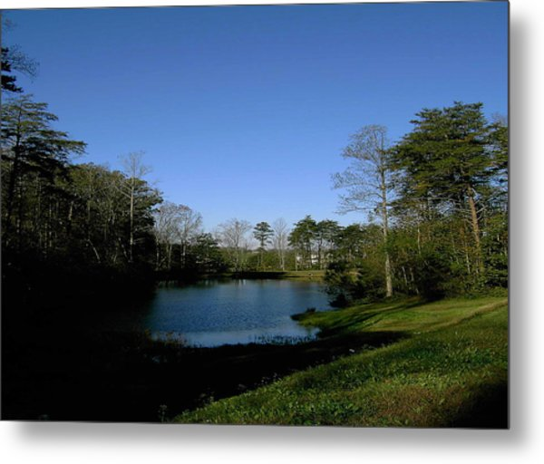 Relaxing By The Pond Metal Print by Patrick Murphy