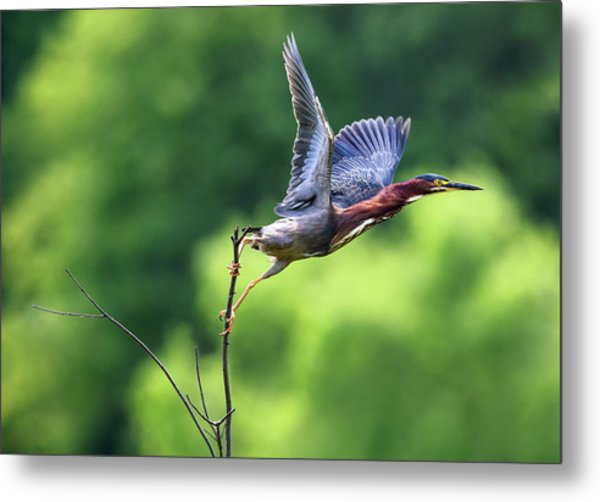 Release Point Metal Print