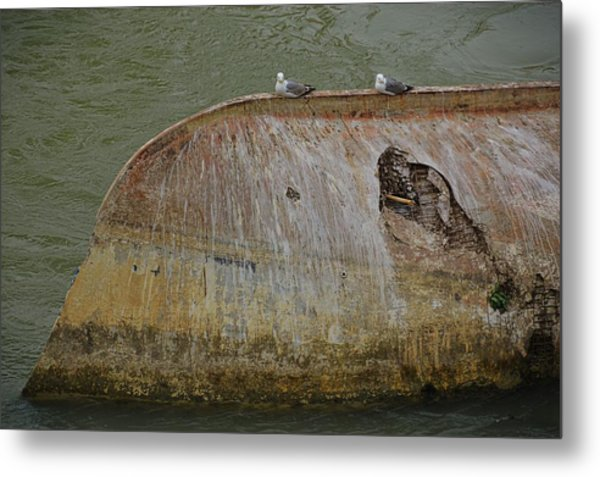 Renewed Purpose Metal Print by JAMART Photography