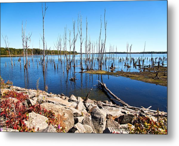 Metal Print featuring the photograph Reservoir by Angel Cher