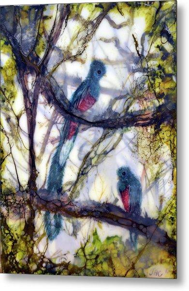 Resplendent Quetzal #1 Metal Print