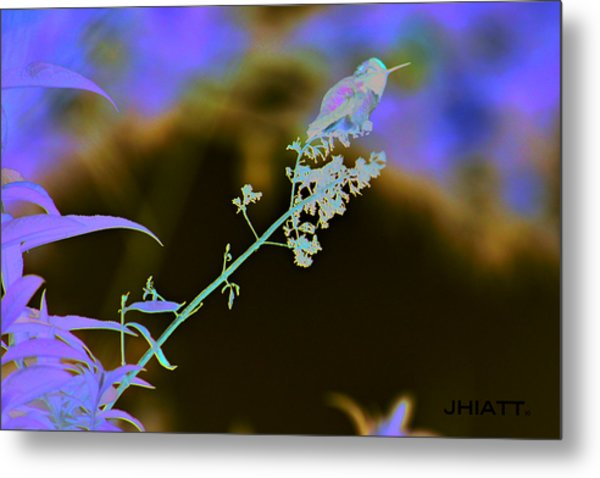Rest Little One  Metal Print