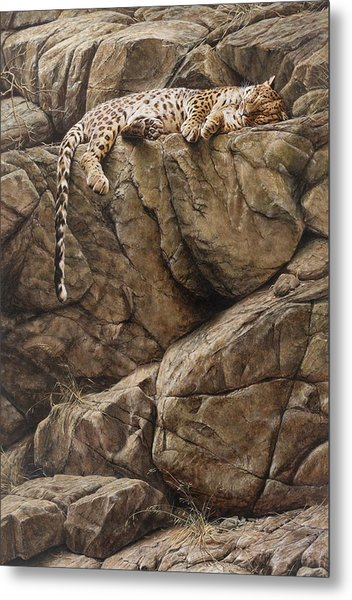 Metal Print featuring the painting Resting In Comfort by Alan M Hunt