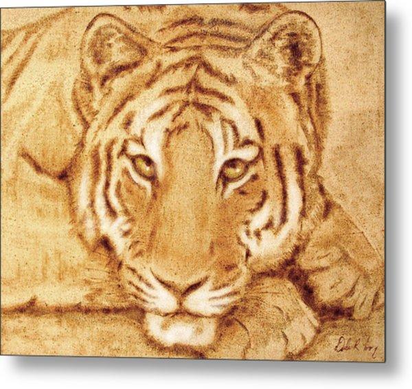 Resting Tiger Metal Print