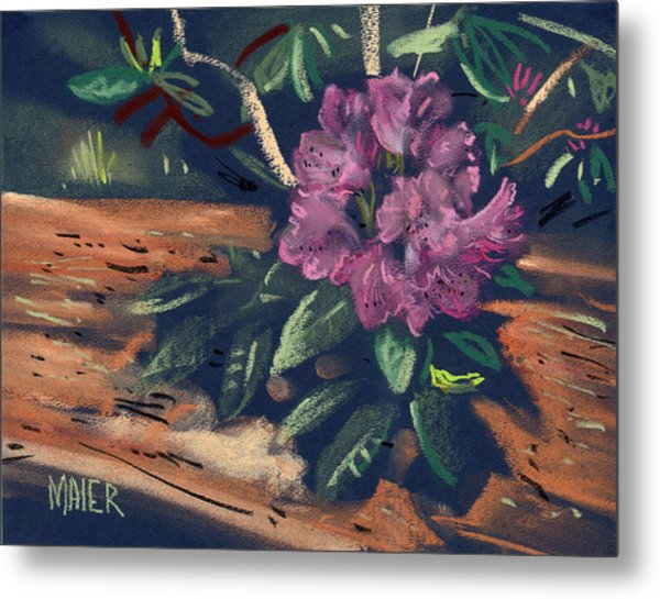 Rhododendron Metal Print by Donald Maier