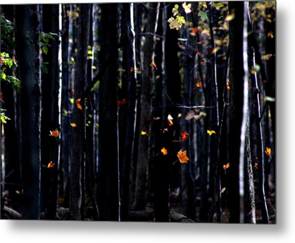Rhythm Of Leaves Falling Metal Print