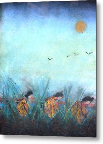 Rice Paddy Metal Print by Thomas Armstrong