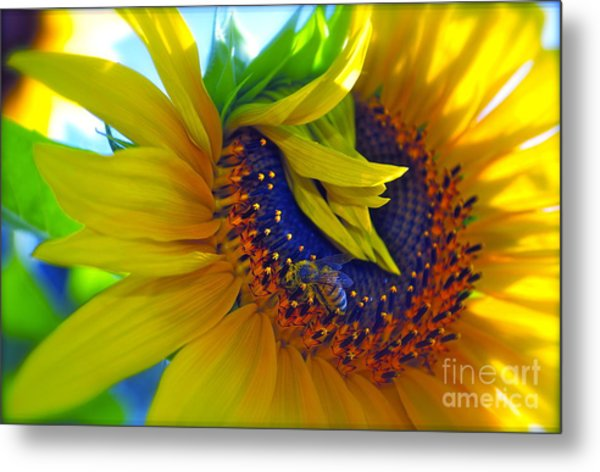 Rich In Pollen Metal Print