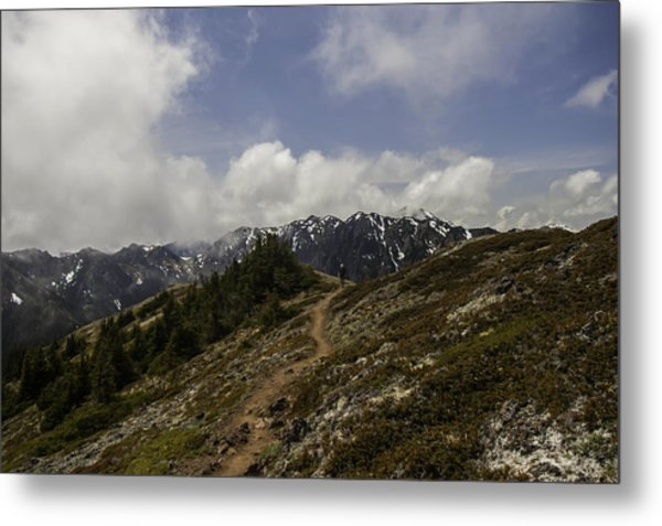 Ridge Walking In The Olympic Mountains Metal Print