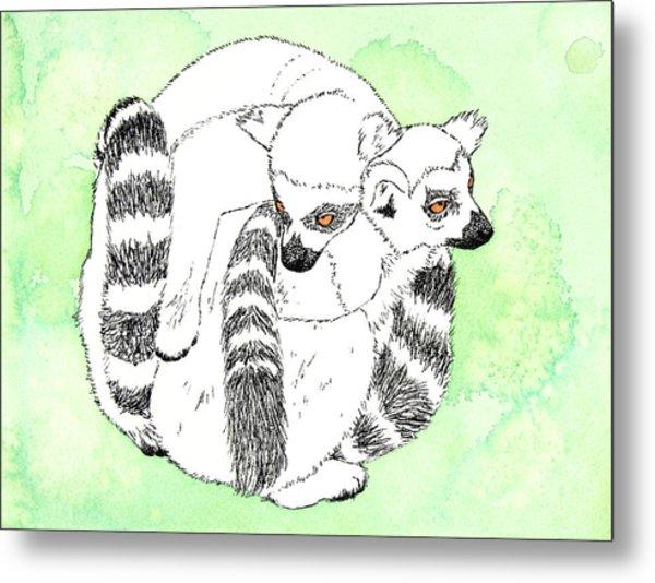 Ring-tailed Lemur Huddle Metal Print