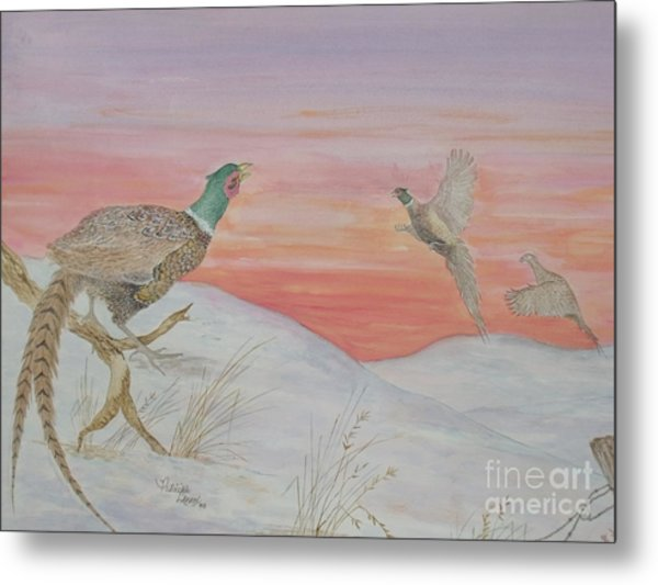 Ringnecks At Sunrise Metal Print
