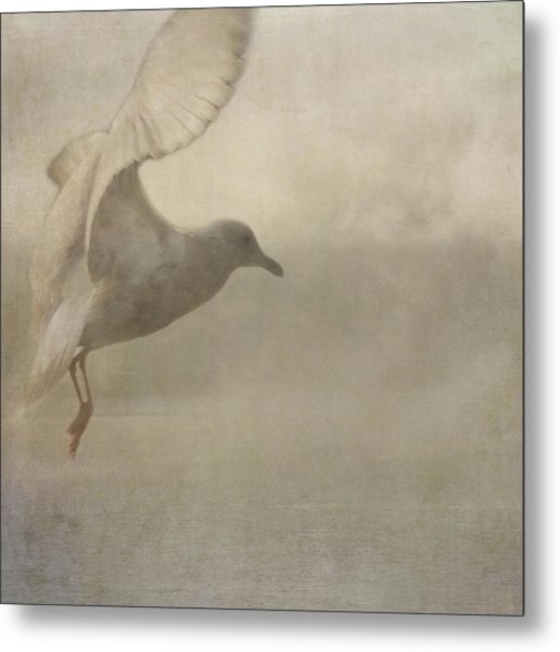Metal Print featuring the photograph Rising Mist by Sally Banfill