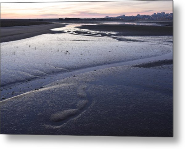Dusky Wetlands Metal Print