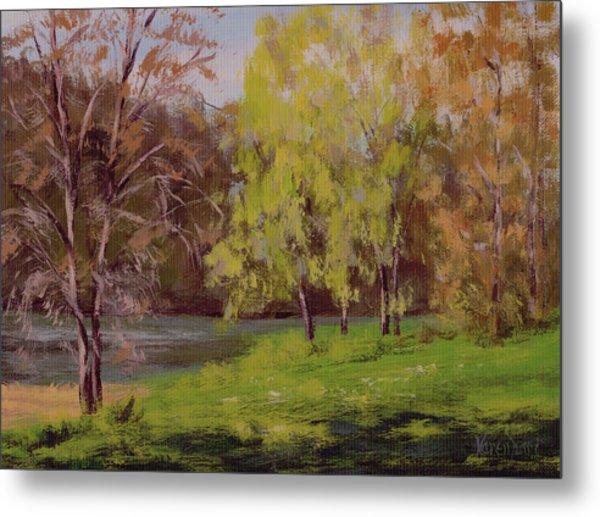 River Forks Spring 2 Metal Print