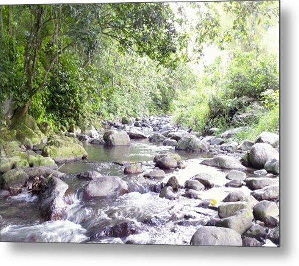 River In Adjuntas Metal Print