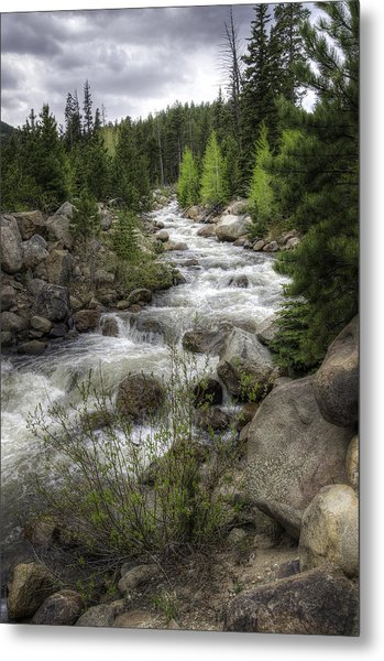 River In The Park Metal Print