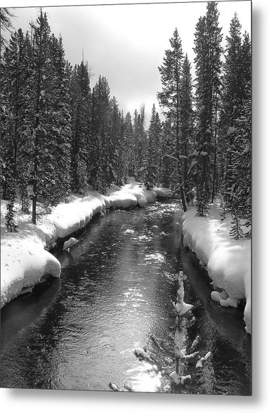 River In Yellowstone Metal Print