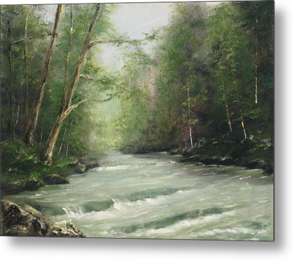 River Retreat Metal Print