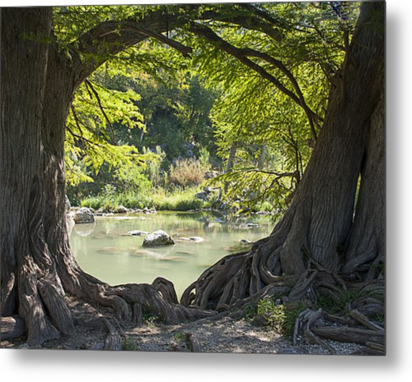 River Through Trees Metal Print