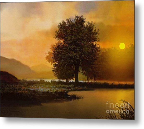 River Tree Metal Print by Robert Foster