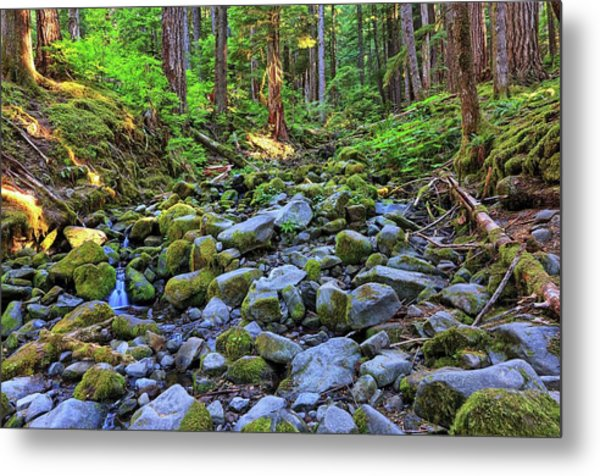 Riverbed Full Of Mossy Stones With Small Cascade Metal Print