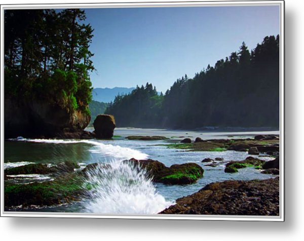 Rivers And Lakes Around Olympic National Park America Metal Print