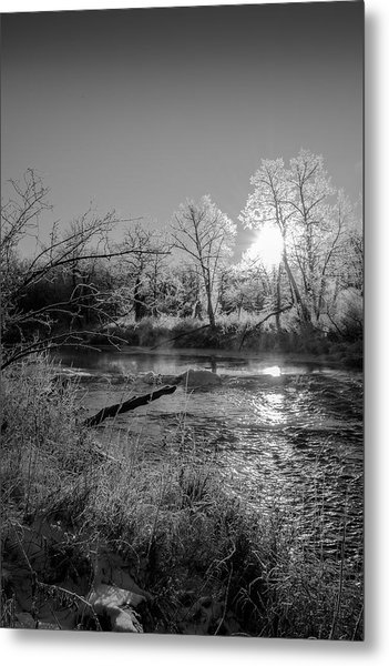 Rivers Edge Metal Print