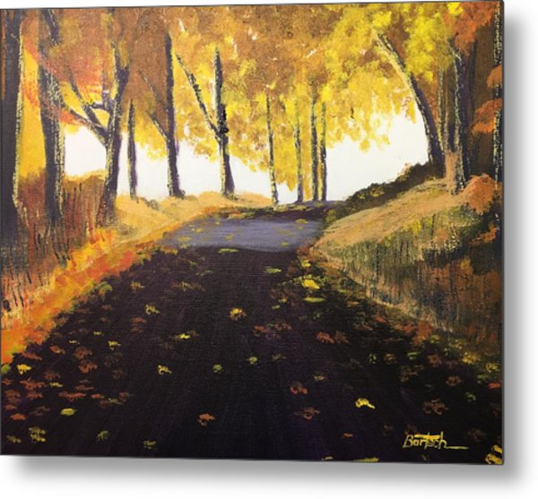 Road In Autumn Metal Print