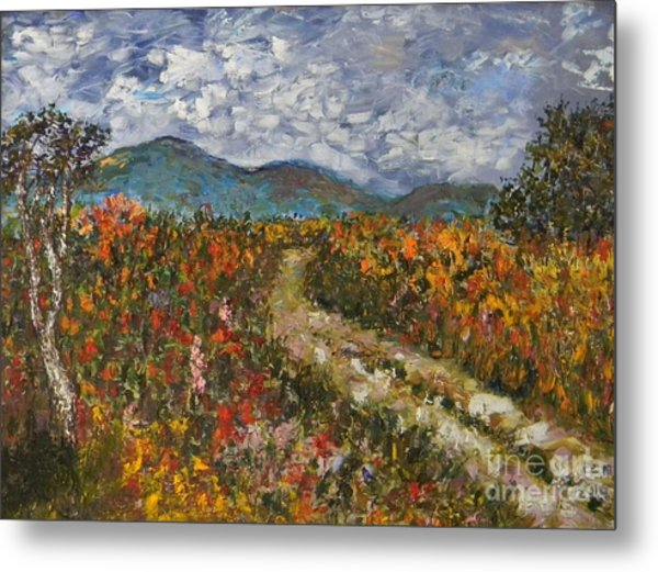 Road Through Colored Meadows Metal Print by Emily Michaud