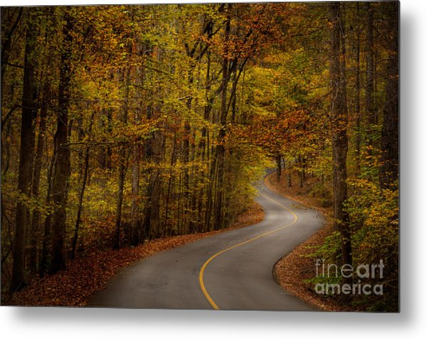 Road Through Tishomingo State Park Metal Print