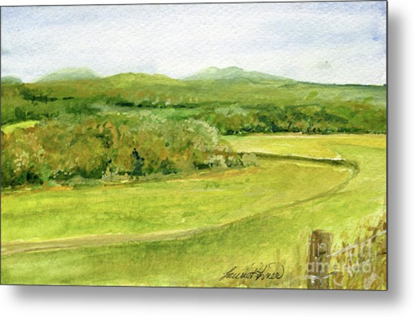 Road Through Vermont Field Metal Print