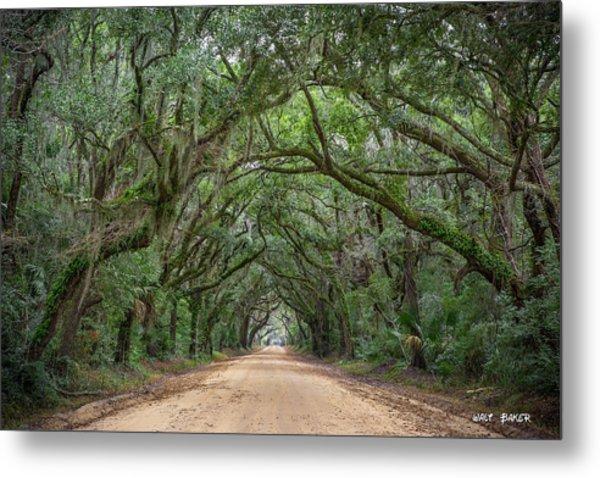 Road To Botany Bay Metal Print