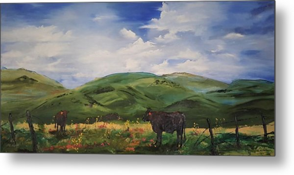 Road To Melrose, Montana         32 Metal Print