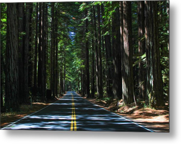 Road To Mendocino Metal Print