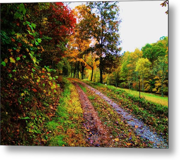 Road To My Farm Metal Print by Terry  Wiley