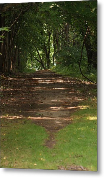Road To Nowhere Metal Print by Heather Green