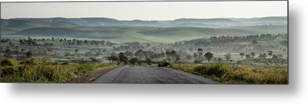 Road To The Forest Metal Print