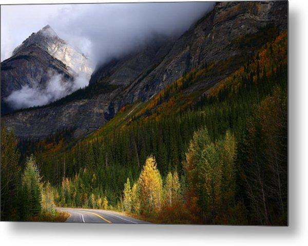 Roadside Landscape At Banff National Park Metal Print