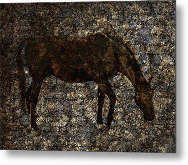 Roan Stallion Metal Print