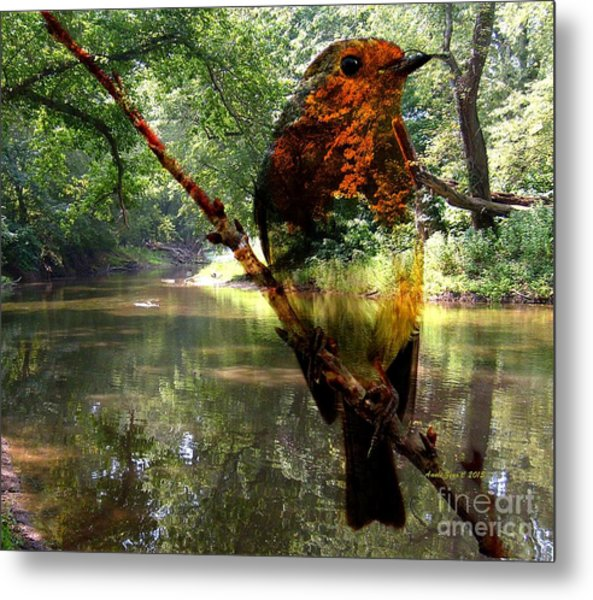 Robin By The River Metal Print