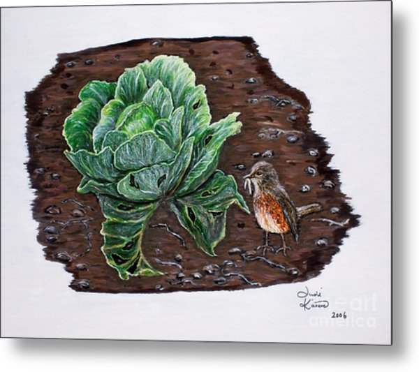 Robin In The Gardin Metal Print
