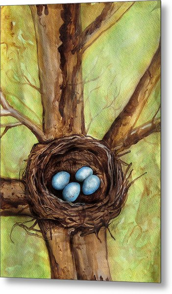 Robin's Nest Metal Print by Carrie Jackson