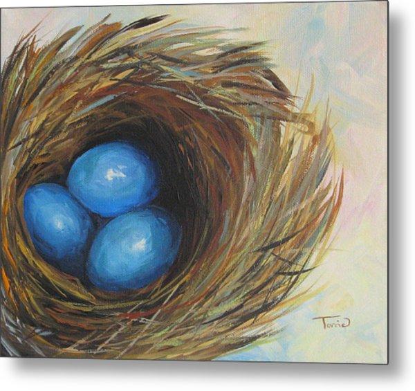 Robin's Three Eggs Metal Print by Torrie Smiley