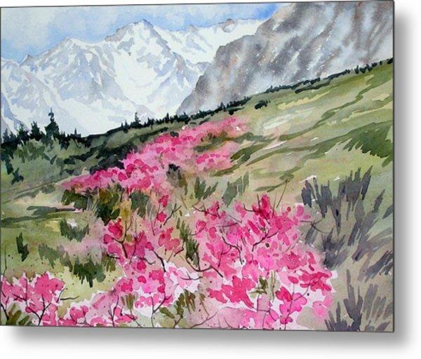 Rock Creek Desert Peach Metal Print