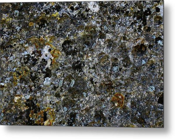 Rock Lichen Surface Metal Print