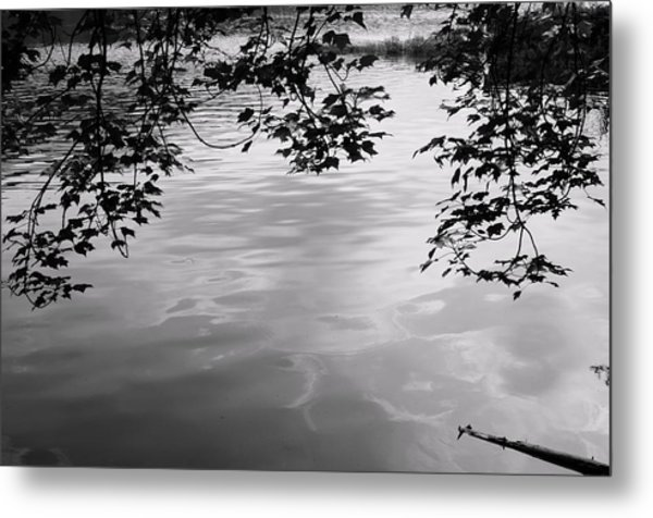 Rock Pond Metal Print